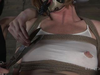 bound hard and punished harder