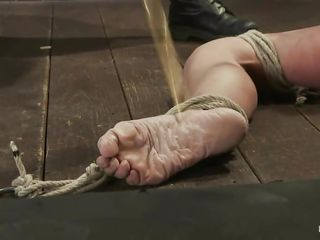 bitch tied on the floor and punished