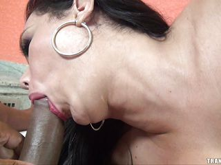 brunette t-girl sucking a large black cock