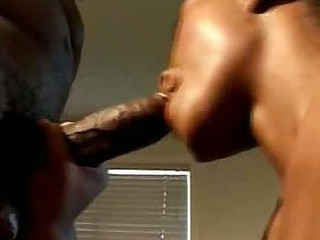 Black Pornstar Africa Gives Oral