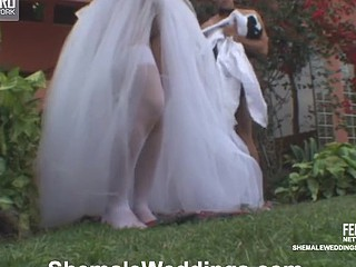 Outdoor backdoor fucking with raunchy shemale bride and her horny groom